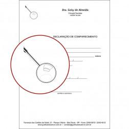 Declaração de Comparecimento PB - 006